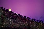 Lever de lune - Boulouparis