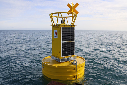 Attached to the buoy is an autonomous hydrophone (underwater microphone) which will record whale species in real-time