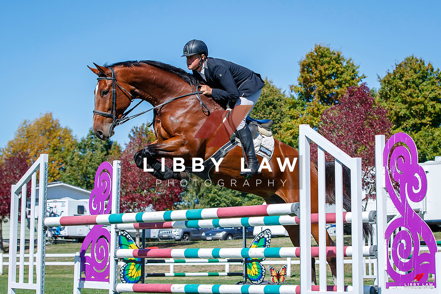 NZL-Lucas Bremner rides LT Holst Francis. Class 25: Horse 1.10m Ranking Class. 2021 NZL-Easter Jumping Festival presented by McIntosh Global Equestrian and Equestrian Entries. NEC Taupo. Saturday 3 April. Copyright Photo: Libby Law Photography