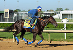 LOUISVILLE, KY - APRIL 24: Mor Spirit (Eskendereya x Im a Dixie Girl, by Dixie Union) gallops with exercise rider Georgie Alvarez at Churchill Downs in preparation for the Kentucky Derby. Owner Michael Lund Peterson, trainer Bob Baffert. (Photo by Mary M. Meek/Eclipse Sportswire/Getty Images)