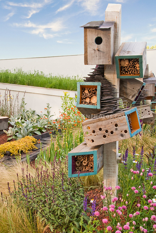 Attracting Wildlife & Birds to Backyard Garden, blue sky and clouds, lots of flowering plants, insect houses, nesting materials, birdhouse, bug shelters, nectar sources plantings, feeders, habitat for wildlife