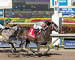 HALLANDALE BEACH, FL - MAR 17:Ivy Bell #1 trained by Todd A. Pletcher with Javier Castellano in the irons wins the $200,000 Inside Information Stakes (G2) at Gulfstream Park on March 17, 2018 in Hallandale Beach, Florida. (Photo by Bob Aaron/Eclipse Sportswire/Getty Images)