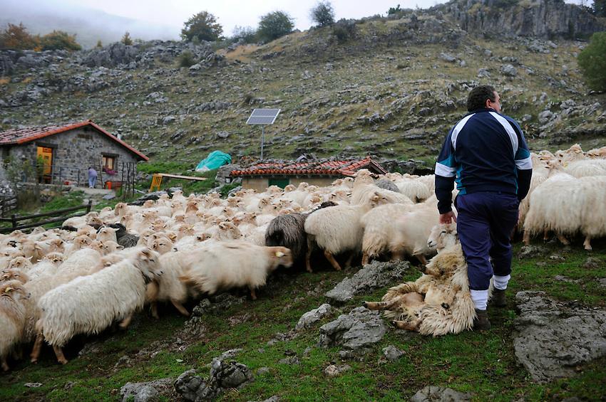 Euskal artzaiak Aralarko Pagabe bordan / Basque shepherds in 'Pagabe' borda, Aralar. Euskal Herria / Basque Country . Basque shepherd daily life.Photo: Ander Gillenea