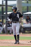 Chicago White Sox second baseman Laz Rivera (31) prepares to step into the batter's box during an Instructional League game against the San Diego Padres on September 26, 2017 at Camelback Ranch in Glendale, Arizona. (Zachary Lucy/Four Seam Images)