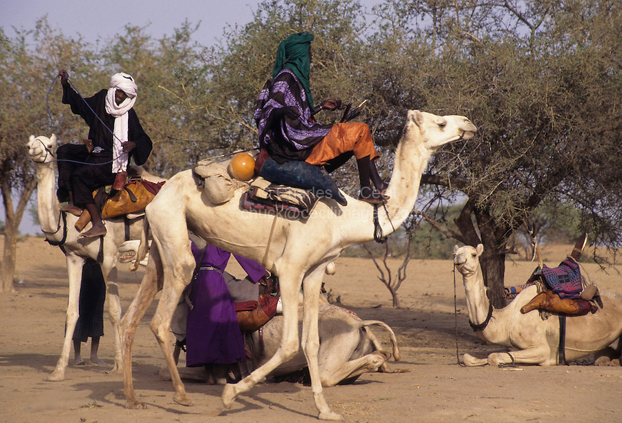 Akadaney, Central Niger, West Africa.  Fulani Nomads at Annual Gathering, Geerewol.  Starting out on a Journey.