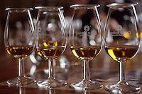 Europe/Grande-Bretagne/Ecosse/Moray/Speyside/Keith : Distillerie Strathisia Whisky Chivas - Dégustation avec le maître assembleur de Chivas Master Blender Colin Scott - Détail des verres