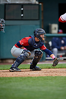 New Hampshire Fisher Cats catcher Ryan Hissey (20) waits to receive a pitch during the first game of a doubleheader against the Harrisburg Senators on May 13, 2018 at FNB Field in Harrisburg, Pennsylvania.  New Hampshire defeated Harrisburg 6-1.  (Mike Janes/Four Seam Images)