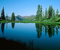 Reflection of sky and trees in a pond at Paradise Divide, near Crested Butte, Colorado.