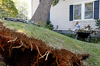 Sue Copeland surveys the damage from a large tree that fell onto her home on St. George Avenue in Crozet, VA. Strong winds from Friday night's storm downed numerous trees and caused massive power outages across the area. Photo/Andrew Shurtleff