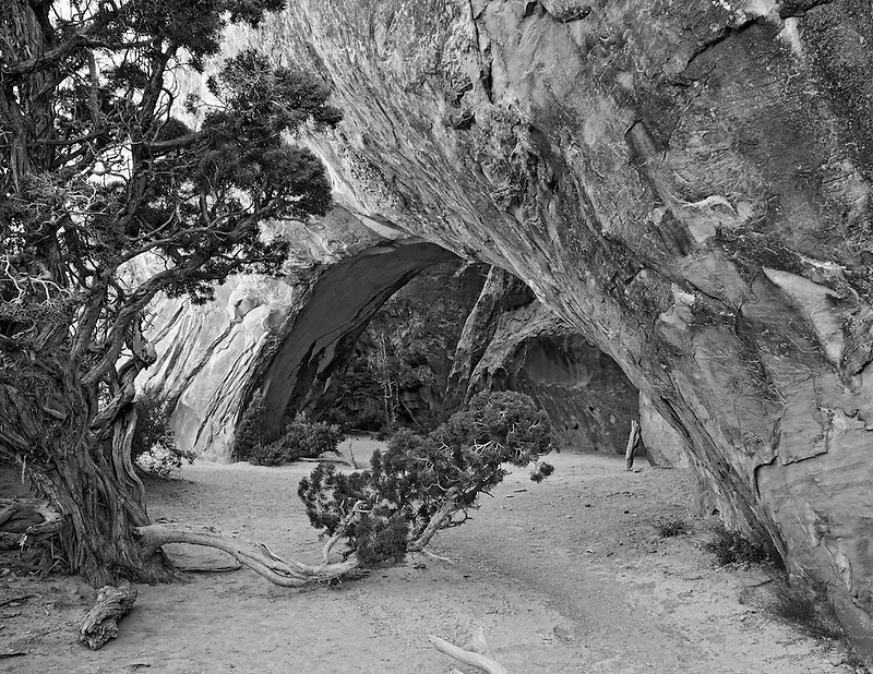 Navajo Arch. Arches National Park. Utah.