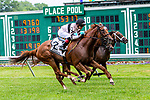 JULY 17, 2021: Great Island, #2, ridden by Joel Rosario, wins the  Gr. 3  Matchmaker Stakes, going 1 1/8  mile on the turf, at Monmouth Park in Oceanport, NJ.  Sue Kawczynski/Eclipse Sportswire/CSM