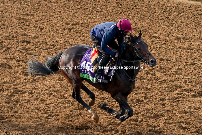 November 5, 2020: Lope Y Fernandez, trained by trainer Aidan P. O'Brien, exercises in preparation for the Breeders' Cup Mile at Keeneland Racetrack in Lexington, Kentucky on November 5, 2020. John Voorhees/Eclipse Sportswire/Breeders Cup/CSM
