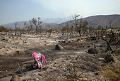 Juniper Hills, California<br /> September 22, 2020<br /> <br /> The Bobcat wildfire rages in the Angeles National Forest as fire fighters work to control areas where buildings or populations are present.