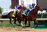 May 26, 2014: Southern Honey, ridden by Julien Leparoux, wins the G3 Winning Colors at Churchill Downs. She is owned by Ashbrook Farm and trained by George R. Arnold.  Mary M. Meek/ESW/CSM