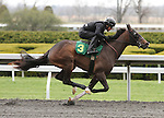 April 03, 2014: Hip 3 Tale of Ekati - Memories for Us consigned by Sequel Bloodstock worked 1/8 in 10:0.  Candice Chavez/ESW/CSM