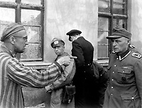 Russian slave laborer among prisoners liberated by 3rd Armored Division points out fromer Nazi guard who brutally beat prisoners.  Germany, April 14, 1945.  T4c. Harold M. Roberts. (Army)<br /> NARA FILE #:  111-SC-203466<br /> WAR & CONFLICT BOOK #:  1111