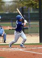 Brett Jackson - Los Angeles Dodgers 2018 spring training (Bill Mitchell)
