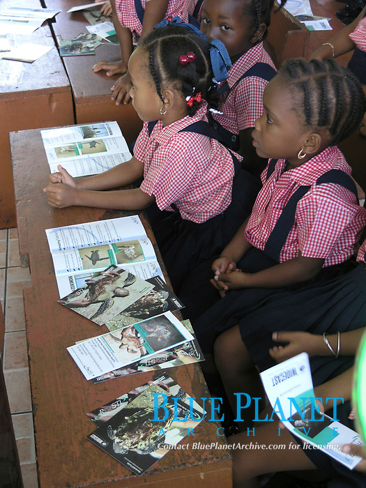 local children learn about sea turtle conservation at school, Dominica, West Indies, Caribbean, Atlantic