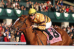 Wise Dan and jockey Julien Leparoux win the 53rd running of the Fayette GRII $150,000 at Keeneland raceourse on the meets closing day of the fall meet.   Trained by Charles Lopresti and owned by Morton Fink. October 29, 2011.