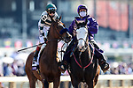 November 7, 2020 : Gamine, ridden by John Velazquez, gets ready for the Filly & Mare Sprint on Breeders' Cup Championship Saturday at Keeneland Race Course in Lexington, Kentucky on November 7, 2020. Wendy Wooley/Breeders' Cup/Eclipse Sportswire/CSM