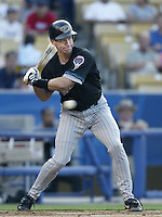 Damian Miller of the Arizona Diamondbacks bats during a 2002 MLB season game against the Los Angeles Dodgers at Dodger Stadium, in Los Angeles, California. (Larry Goren/Four Seam Images)
