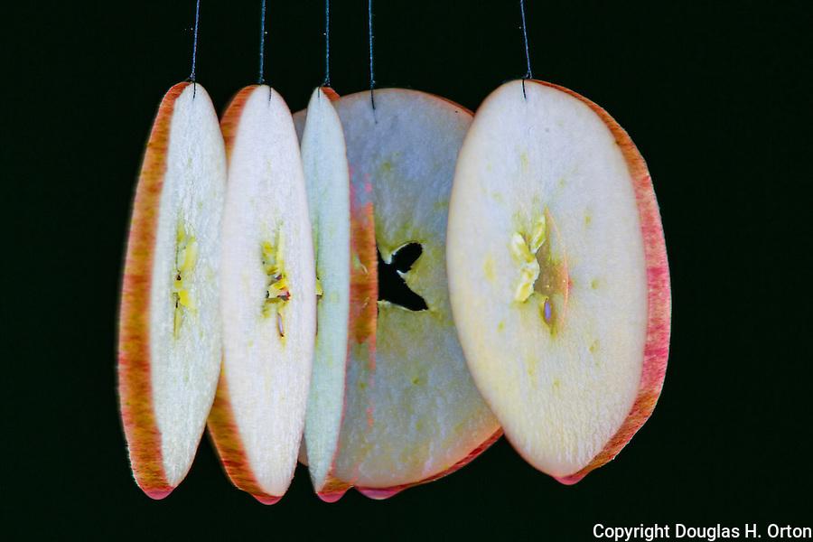 Slice of apple.  Multiple exposure.  Action image.
