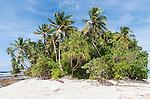 Beach on the northern point of Funafuti atoll, Tuvalu