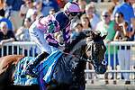 ARLINGTON HEIGHTS, IL - AUGUST 13: Mondialiste #9, ridden by Daniel Alexander Tubhope, during the post parade before the Arlington Million at Arlington International Racecourse on August 13, 2016 in Arlington Heights, Illinois. (Photo by Jon Durr/Eclipse Sportswire/Getty Images)