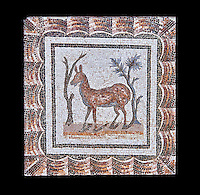 3rd century AD Roman mosaic depiction of two deer between two shrubs. Thysdrus (El Jem), Tunisia.  The Bardo Museum, Tunis, Tunisia. Black background