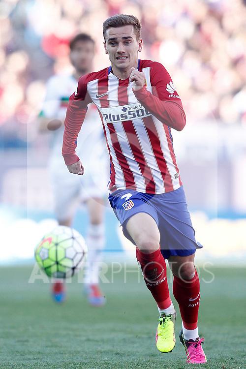 Atletico de Madrid's Antoine Griezmann during La Liga match. April 17,2016. (ALTERPHOTOS/Acero)