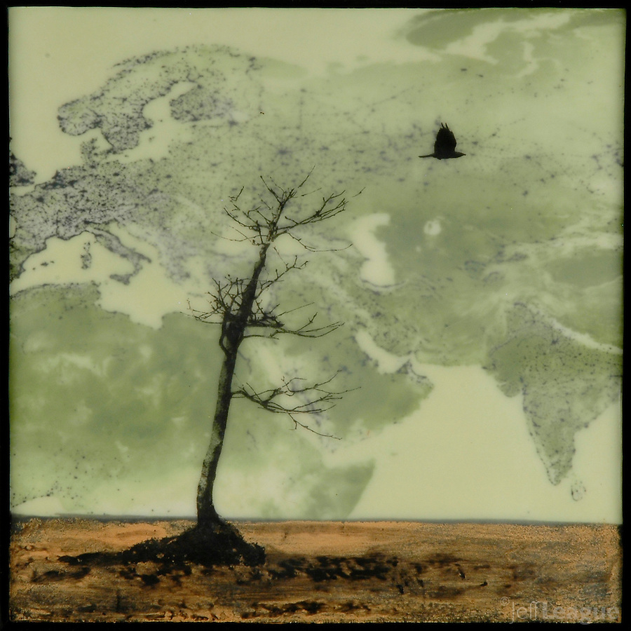Mixed media encaustic photography with satellite image of night sky and bare tree with    flying crow.