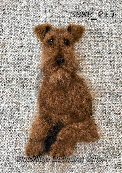 Simon, REALISTIC ANIMALS, REALISTISCHE TIERE, ANIMALES REALISTICOS, innovative, paintings+++++SharonS_IrishTerrier,GBWR213,#a#, EVERYDAY dogs,breeds of dog,