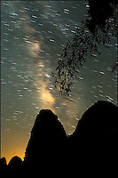 The Milky Way over silhouetted limestone mountains and a bamboo tree, Lijiang, China