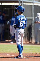 Kansas City Royals minor league outfielder Alfredo Escalera #67 during an instructional league game against the Seattle Mariners at the Peoria Sports Complex on October 2, 2012 in Peoria, Arizona.  (Mike Janes/Four Seam Images)