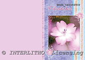 Alfredo, FLOWERS, paintings, BRTOCH40560CP,#F# Blumen, flores, illustrations, pinturas