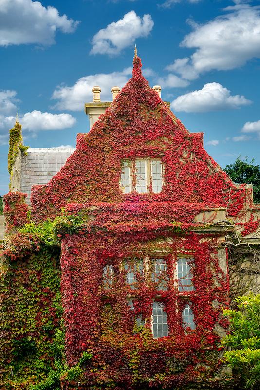 Muckross House and ivy covered walls. Killarney National Park, Ireland