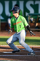 Mitch Roman (1) of the Great Falls Voyagers at bat against the Ogden Raptors in Pioneer League action at Lindquist Field on August 16, 2016 in Ogden, Utah. Ogden defeated Great Falls 2-1. (Stephen Smith/Four Seam Images)