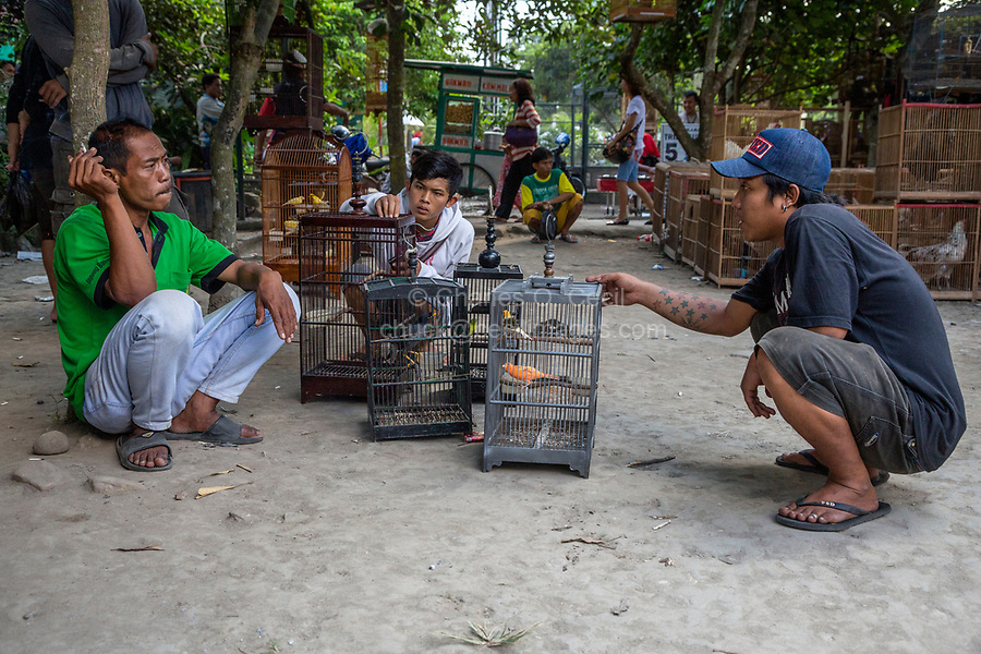Yogyakarta, Java, Indonesia.  Bargaining with a Vendor over the Price of a Bird in the Bird Market.