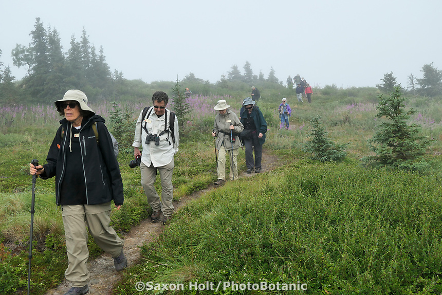 Glen Alps Trail in Chugach Mountains, Alaska, Pacific Horticulture Society tour