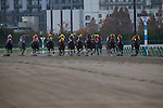 TOYOAKE,JAPAN-DECEMBER 04: Sound True (yellow mask),ridden by Takuya Ono,wins the Champions Cup at Chukyo Racecourse on December 04,2016 in Toyoake,Aichi,Japan (Photo by Kaz Ishida/Eclipse Sportswire/Getty Images)