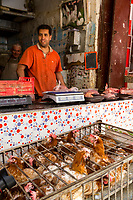 Fes, Morocco.  Chicken Salesman in the Medina.