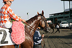 11 October 2009: Presious Passion and Elvis Trujillo wire the field to win the Clement L. Hirsch Turf Championship (GI) at Oak Tree at Santa Anita Park