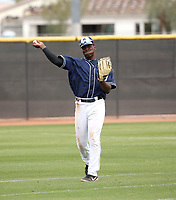 Dwanya Williams-Sutton - San Diego Padres 2019 spring training (Bill Mitchell)