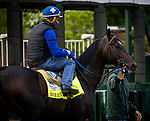 April 28, 2021: Rock Your World schools at the gate in preparation for the Kentucky Derby at Churchill Downs in Louisville, Kentucky on April 28, 2021. EversEclipse Sportswire/CSM