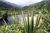 Kohaihai River on start of Heaphy Track, Kahurangi National Park, West Coast, Buller Region, New Zealand