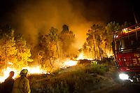 2012-08-20 forest fire Castrocontrigo