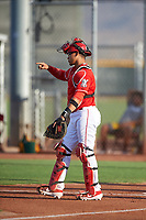 AZL Reds catcher Elvis Gomez (29) during an Arizona League game against the AZL Athletics Green on July 21, 2019 at the Cincinnati Reds Spring Training Complex in Goodyear, Arizona. The AZL Reds defeated the AZL Athletics Green 8-6. (Zachary Lucy/Four Seam Images)