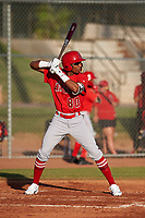 AZL Angels designated hitter William Rivera (80) at bat during a game against the AZL Giants Orange at Giants Baseball Complex on June 17, 2019 in Scottsdale, Arizona. AZL Giants Orange defeated AZL Angels 8-4. (Zachary Lucy/Four Seam Images)