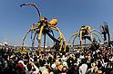 Giant Spiders in Yokohama