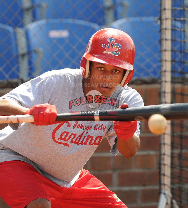 August 1, 2009: Infielder Yunior Castillo (7) of the Johnson City Cardinals, rookie Appalachian League affiliate of the St. Louis Cardinals, in a game at Howard Johnson Field in Johnson City, Tenn. Photo by: Tom Priddy/Four Seam